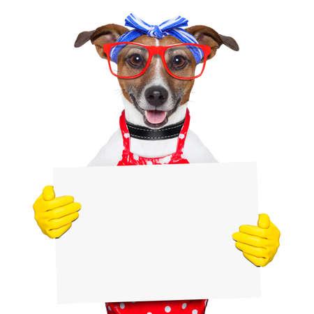 Hausfrau Hund hält ein leeres weißes Plakat