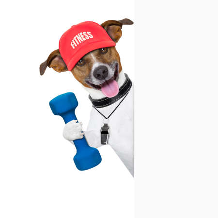 jack of clubs: personal  trainer dog with dumbbell and banner