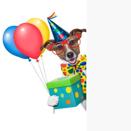 animados: perro del cumpleaños con globos detrás de una pancarta blanca Foto de archivo