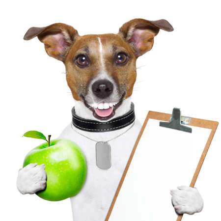 healthy dog with a big smile and a green apple and a clipboard Stock Photo