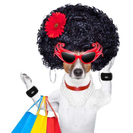 achats de chien diva comme un pro, tenant un bouquet de sacs