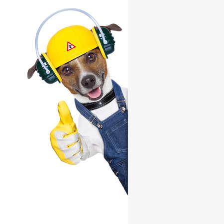 seguridad industrial: divertido perro bajo construcci�n con el pulgar hacia arriba detr�s de una pancarta
