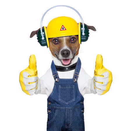 construction workers: funny under construction dog with two thumbs  up Stock Photo