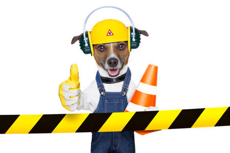 traffic cone: funny under construction dog with thumb up