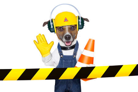 site: funny under construction dog asking to stop Stock Photo