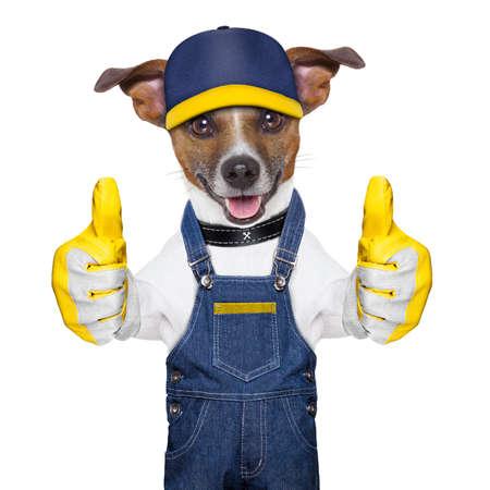 craftsman: perro artesano con dos pulgares, felices de ayudar a
