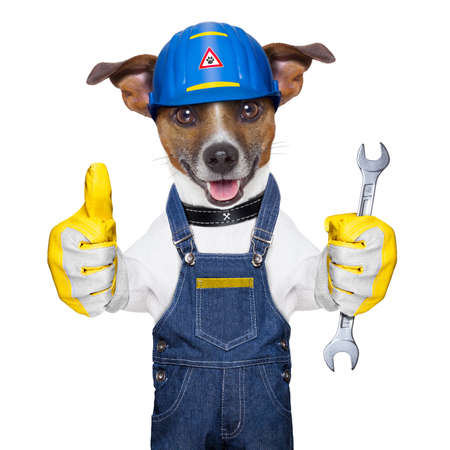 funny dog: craftsman dog with one thumb up holding a tool