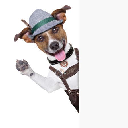 オクトーバーフェスト犬笑顔幸せと足と手を振っています。