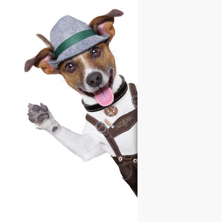 german culture: oktoberfest dog  smiling happy  and waving with paws
