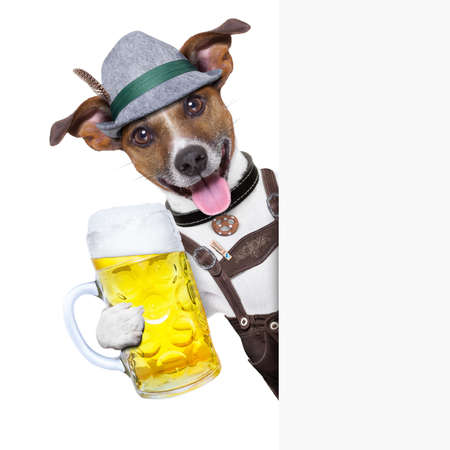 oktoberfest dog with  a beer mug ,smiling happy behing a placard