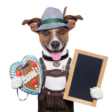 funny dogs: oktoberfest dog with blackboard and gingerbread heart, smiling happy Stock Photo