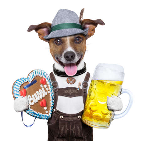 oktoberfest dog with beer mug and gingerbread heart, smiling happy