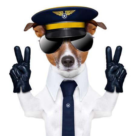 dog: 파일럿 선장 평화 손가락으로 강아지와 파란색 넥타이
