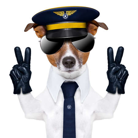 piloto de avion: perro capit�n piloto con dedos de la paz y una corbata azul Foto de archivo