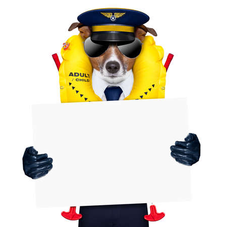 pilot captain dog wearing  emergency life  vest holding a placard photo