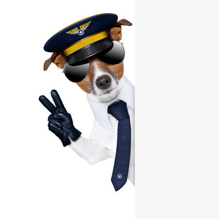 pilot captain dog behind a banner with peace fingers