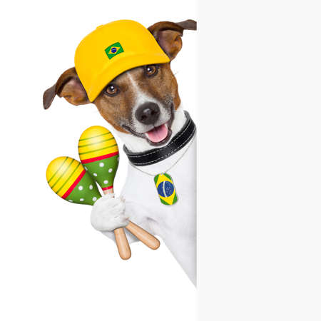 brazil samba dog with shakers behind white banner photo