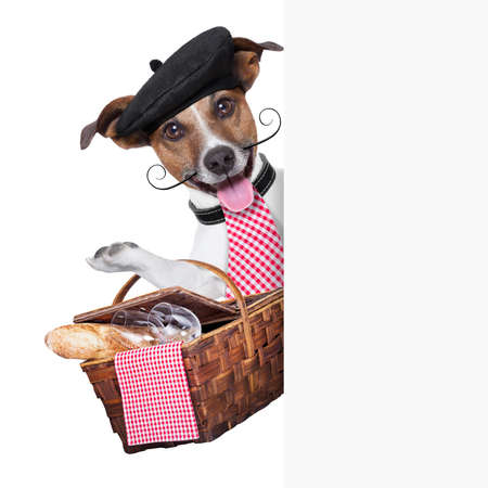 french dog with  Picnic basket behind placard photo