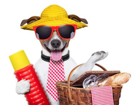 feriado: perro de vacaciones con termo y canasta listo para la comida campestre