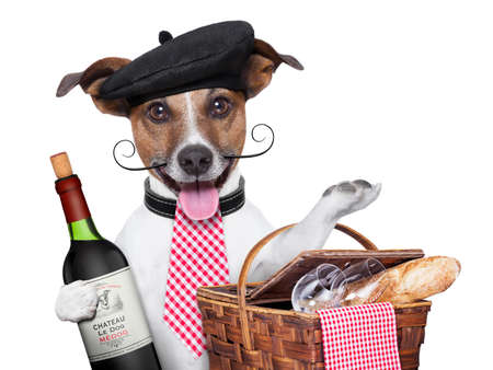 french dog with red wine and Picnic basket Stock Photo - 21377302