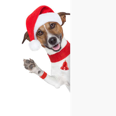 christmas dog as santa behind placard waving with paw