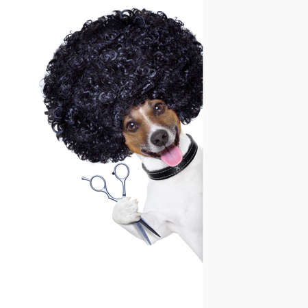 hairdresser  scissors comb dog beside white banner photo