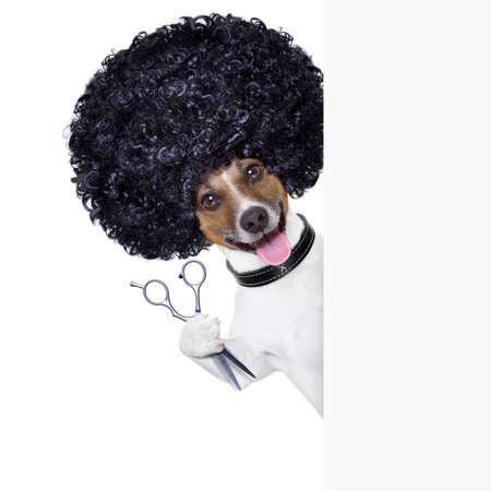 kam: kapper schaar kam hond naast wit spandoek Stockfoto