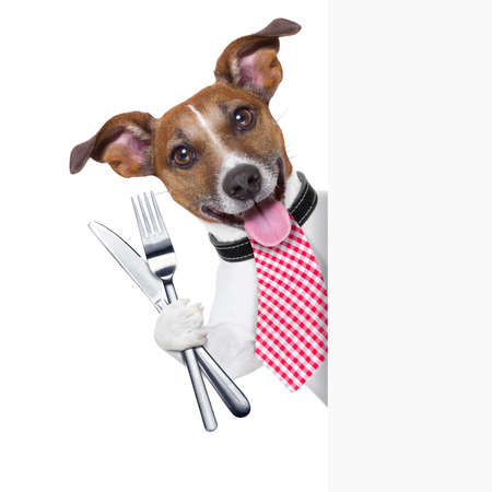 knife and fork: hungry dog with cutlery waiting for the meal