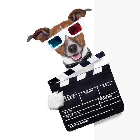 clapper cinema dog behind white banner photo