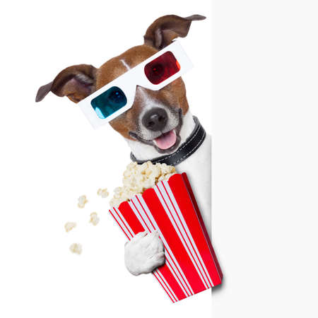 hollywood movie: 3d glasses dog with  popcorn beside a white banner