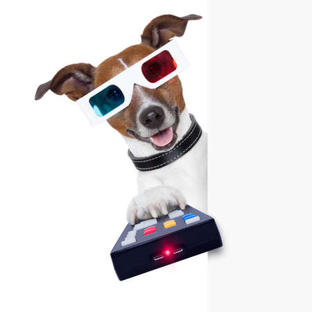 3d glasses movie dog with remote control photo