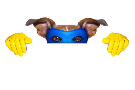 super hero dog with  hiding behind a blank banner photo