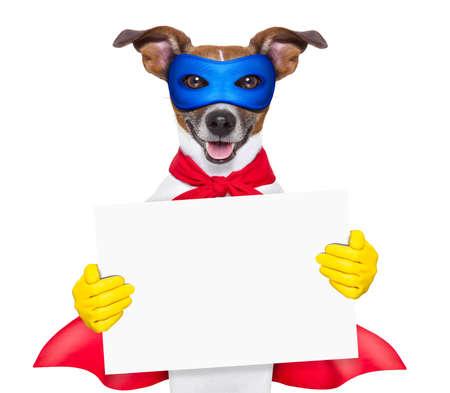 super held hond met rode cape en een blauw masker holging een plakkaat
