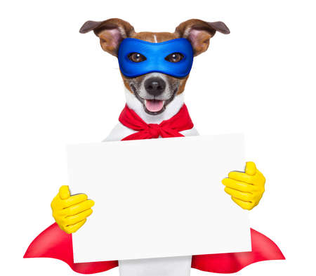 super hero dog with  red cape and a  blue mask holging a placard Stock Photo