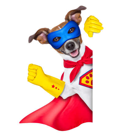 super hero dog with  red cape and a  blue mask beside a blank banner photo