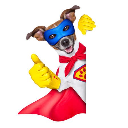 heroes: super hero dog with  red cape and a  blue mask beside a blank banner Stock Photo
