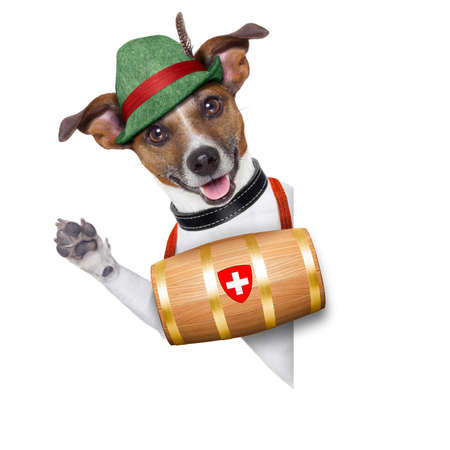 rescue: swiss rescue dog with a barrel and paws up behind banner Stock Photo