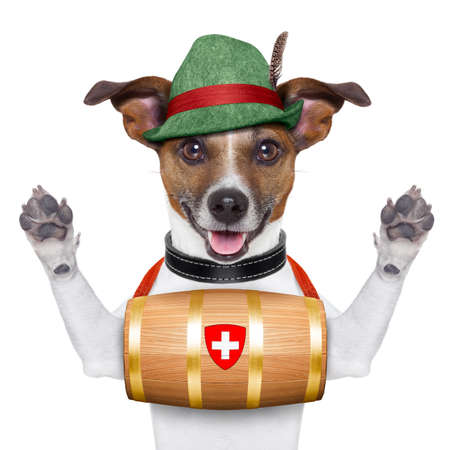swiss rescue dog with a barrel and paws up photo