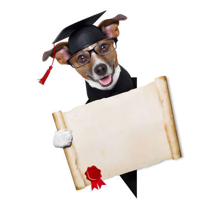 beside: happy graduate dog holding a big diploma beside a banner