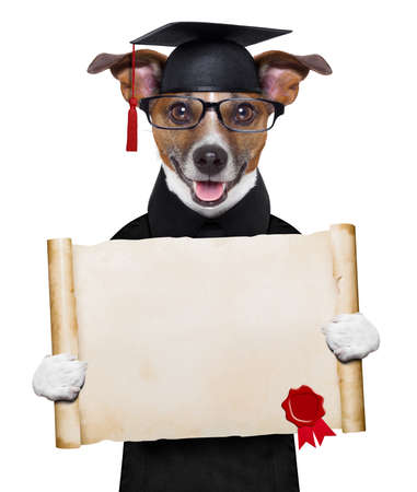 dog school: happy graduate dog holding a big diploma