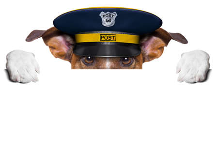 mail: postman mail dog hiding behind blank banner Stock Photo