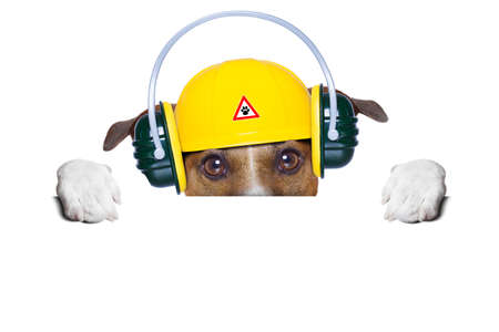 funny under construction dog hiding behind blank banner photo
