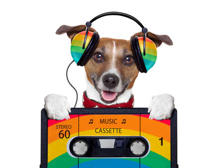 listen to music: dog listening to music from an old cassette of the 80´s Stock Photo