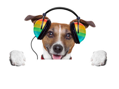 dog listening to music from an old cassette of the 80´s Stock Photo - 22420448