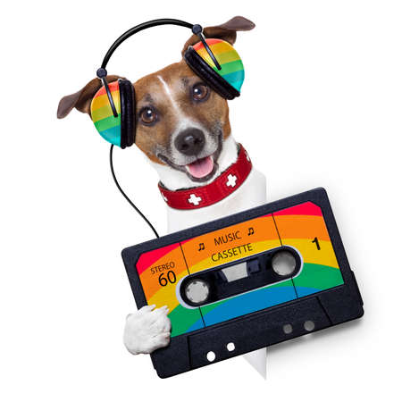 cassettes: dog listening to music from an old cassette of the 80´s Stock Photo