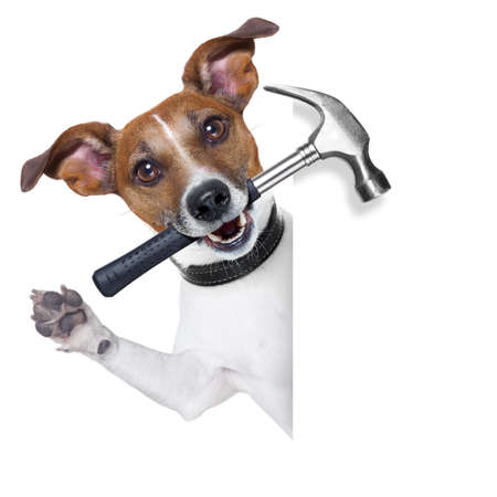 craftsman dog with hammer in mouth beside a white blank banner photo