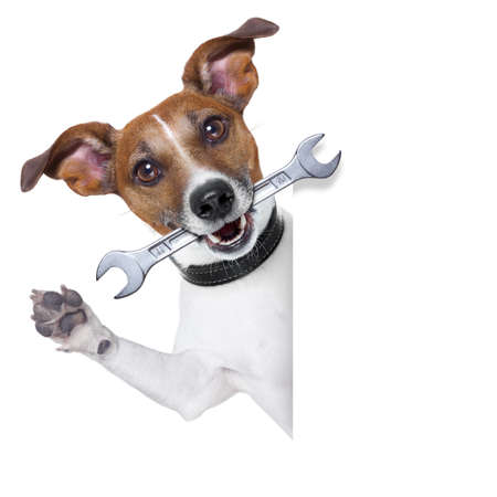 craftsman dog with spanner wrench in mouth beside a white blank banner photo