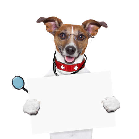 medical doctor dog holding a blank banner photo