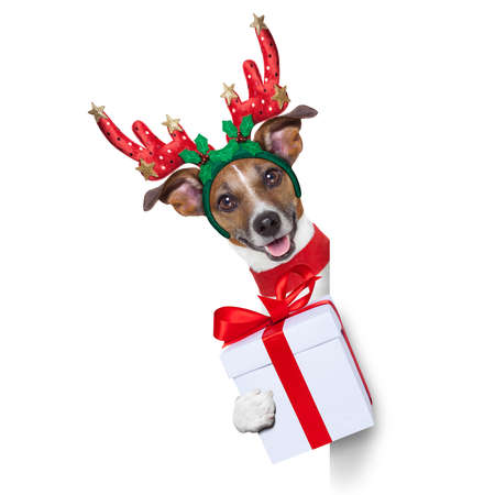 reindeer dog behind a blank banner with a christmas present photo