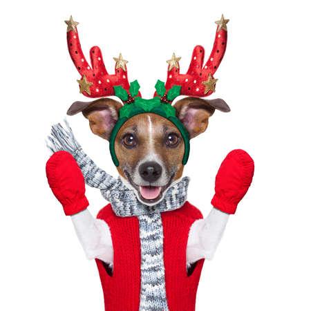 Navidad: perro reno con guantes rojos y jersey